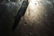 Life is a Beach / by Viv Thomas