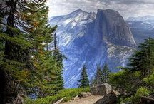 Yosemite: Heaven on Earth / My favorite place to be / by Becky Cagwin