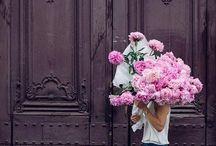 Fleuriste / Pick flowers, not fights