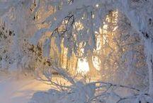Зимние мотивы