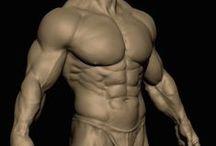 < Man_BODY_Front >