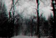 The Years / http://weecct.eu/  visual project | visual effects | photography | forest | road | dark | snow | winter | fog | trees | winter | weather | face | ghost | gloomy | 3D | branch | storm | transition | glitch |