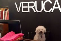 WE ARE DOG FRIENDLY / Here at Veruca Salt, we don't mind if you bring your pooch in to shop with you. In fact, we love it!