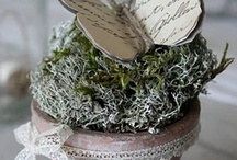 Crafty things I want to do / by Rosemarie Ricker