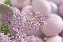 Easter-  Osterndekoration selber machen- Húsvéti ötlettek / by Györgyi Andrea Kovacs