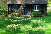 Cozy garden