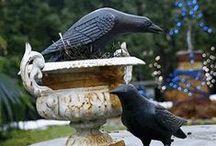 Birds Decor / www.mondusdistinction.com