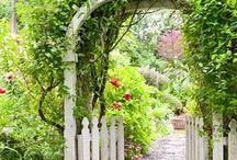 Garden Trellises ans Arbors
