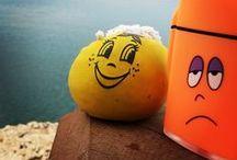 Şükuf /  Şükuf'la Urfa'da tanıştık, bir mahalle bakkalında. :) Sonra yol arkadaşım oldu. Bir stres topundan yol arkadaşı olur mu ? Olur :)