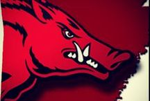 Razorbacks / by Pam Soukup