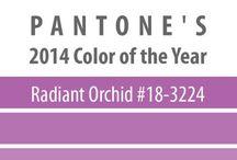 3224 Pantone - radiant orchid