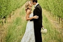 Love In The Vineyards / A collection of our favorites for that special day.