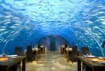Cool Hotel Eateries/Bars