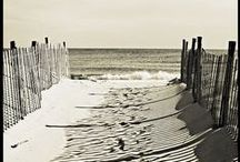 | BEACH LIFE | / by JB