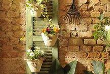 Creative Gardening Ideas
