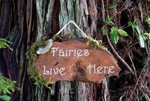 ~+~  Welcome to the Fairy Forest / Welcome to my fantasize about  Fairy's. .. I love the way of life.... and where they lives full of Peace in a gorgeous beautiful  world of nature...Walk slowly and Enjoy with Me... ***Please do not repin all in once...REPIN with respect and follow this board please...Thanks Xxx / by ♥༻ Rose ༺♥ .