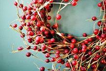 Christmas & Winter mood / by Elena Bettega