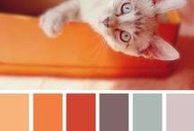 színtér/colour field