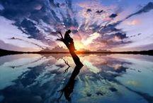 Reflect / by Malia Mohan