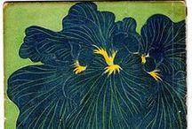 Flowers plants mushrooms butterflies
