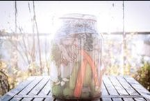 Imaculatura CONSERVA / Rochie murata în apă cu sare + castraveţi + morcovi + gogonele + conopidă + varză roşie + usturoi + piper  - vimeo.com/79956289 -  Murată de: depamplezir.ro Un film de: Mircea Ioan Topoleanu Ciocolatescu Foto: Bogdana Diaconu Cu sprijinul: The poster.ro