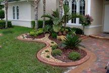 Gardening & Ideas