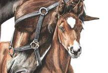 A.R.T. Beautiful Horses / Art van schilderde paarden / by Anna Mos