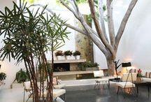 Garden and terrace III