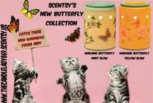 Advocates for FERAL CATS /  Advocates Stand together for pet rescue; Funds badly needed for our TNR efforts In Elko, Nevada ~~ Support pet rescue when you order Scentsy Products  https://thecandlelady869.scentsy.us/
