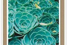 Aqua & turquoise II