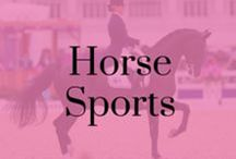 Horse Sports / Dressage, Showjumping, Eventing, Hunting and Racing all in one place.