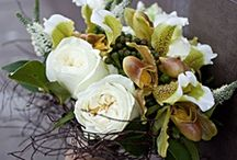 Favorite Flowers / Wedding Flowers, Bunches and Bouquets