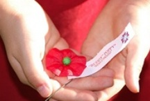 Buddy Poppy / The Buddy Poppy has been used to honor our veterans since 1922. / by VFW Auxiliary