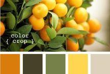 palettes - schemi di colore