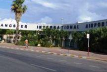Paradise Palms Jamaica Transportation / Jamaica Airport Transfers for Montego Bay, Negril, Ocho Rios, Port Antonio and Kingston. paradisepalmsjamaicatransportation.com