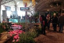 Home & Garden Shows / Favorite photos from Home & Garden Shows that we participate in each year
