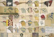새 / 동물