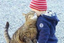 Kids, Cats, Life.