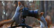 Beautiful world / Nature Naturephotography