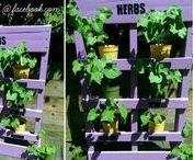 Pallet herb garden ideas / Using pallets as planters, I love this idea. Ideal for herbs or creating vertical flower beds in small gardens. I like the idea of attaching these to a boring house wall, painting them bright colours and planting flowers and herbs. Some lovely examples on this board.