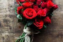 Wedding Flowers / wedding flower inspirations and ideas