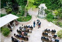 Wedding Venues / wedding venue ideas and inspiration