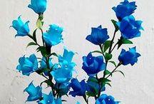 kwiaty papierowe / rękodzieło
