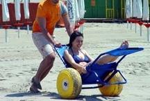 Adaptive Sports & Recreation / by Cerebral Palsy Family Network