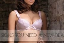 From Our Blog, Lingerie Advice / The latest News and Information from our BAREBERRY Blog Post