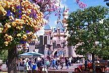 Disneyland / mažoretky