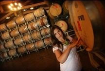 Temecula Valley Wine Country / Wine-making, grape-harvesting, events and more from the region's wineries / by The Press-Enterprise / PE.com