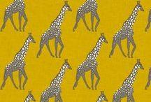 on safari...