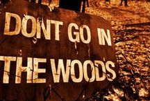 ...through the woods.