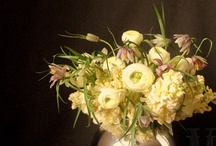 Textured Floral Arrangements / Here's an assortment of some of our favorite floral creations....enjoy!